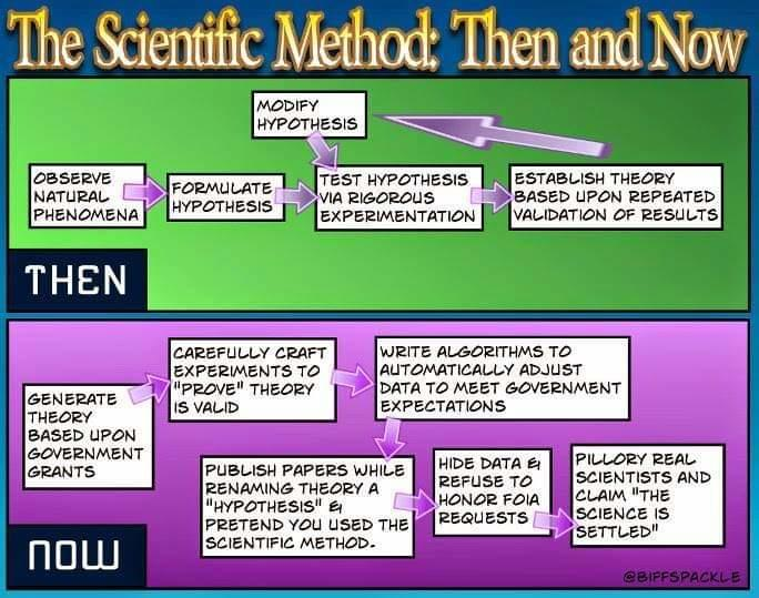 Fake Science Flow Chart