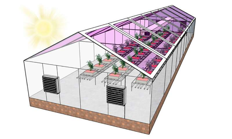 Next Gen. Greenhouse